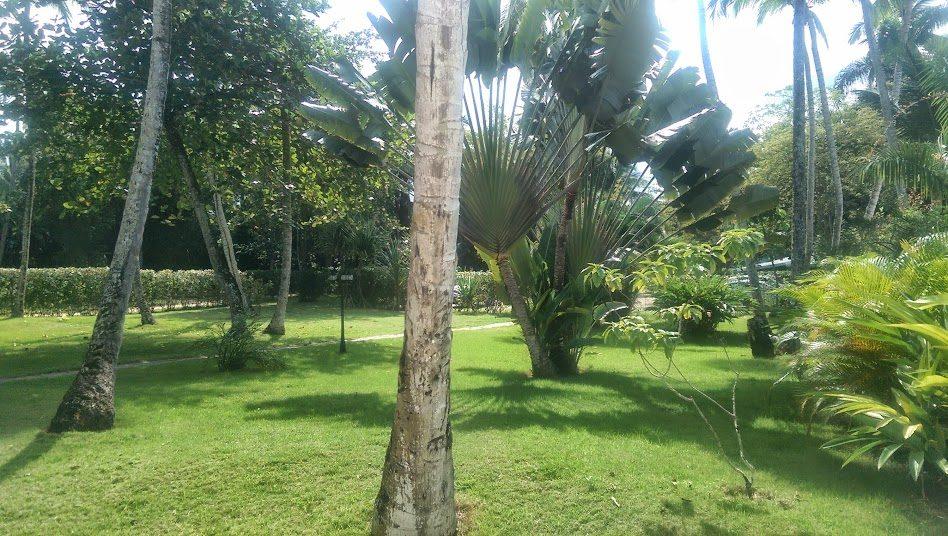 Orlando Vue jardin